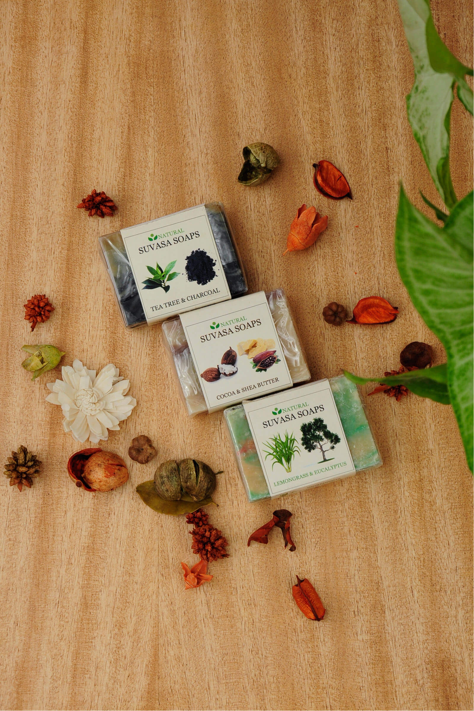Tea Tree & Charcoal