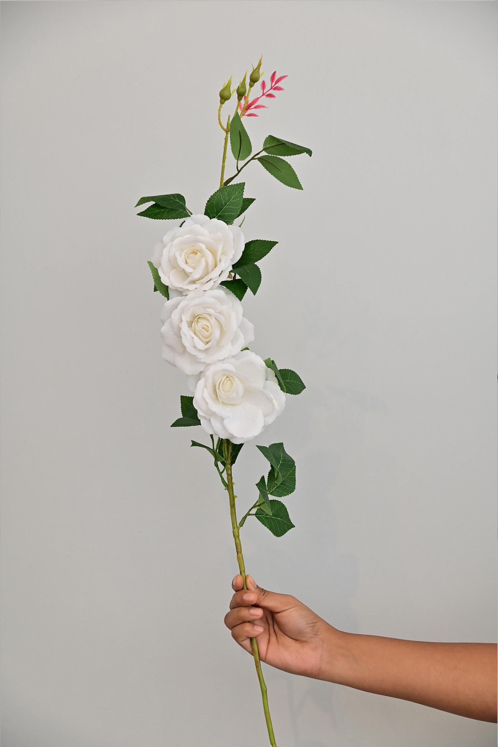 White Roses Stem