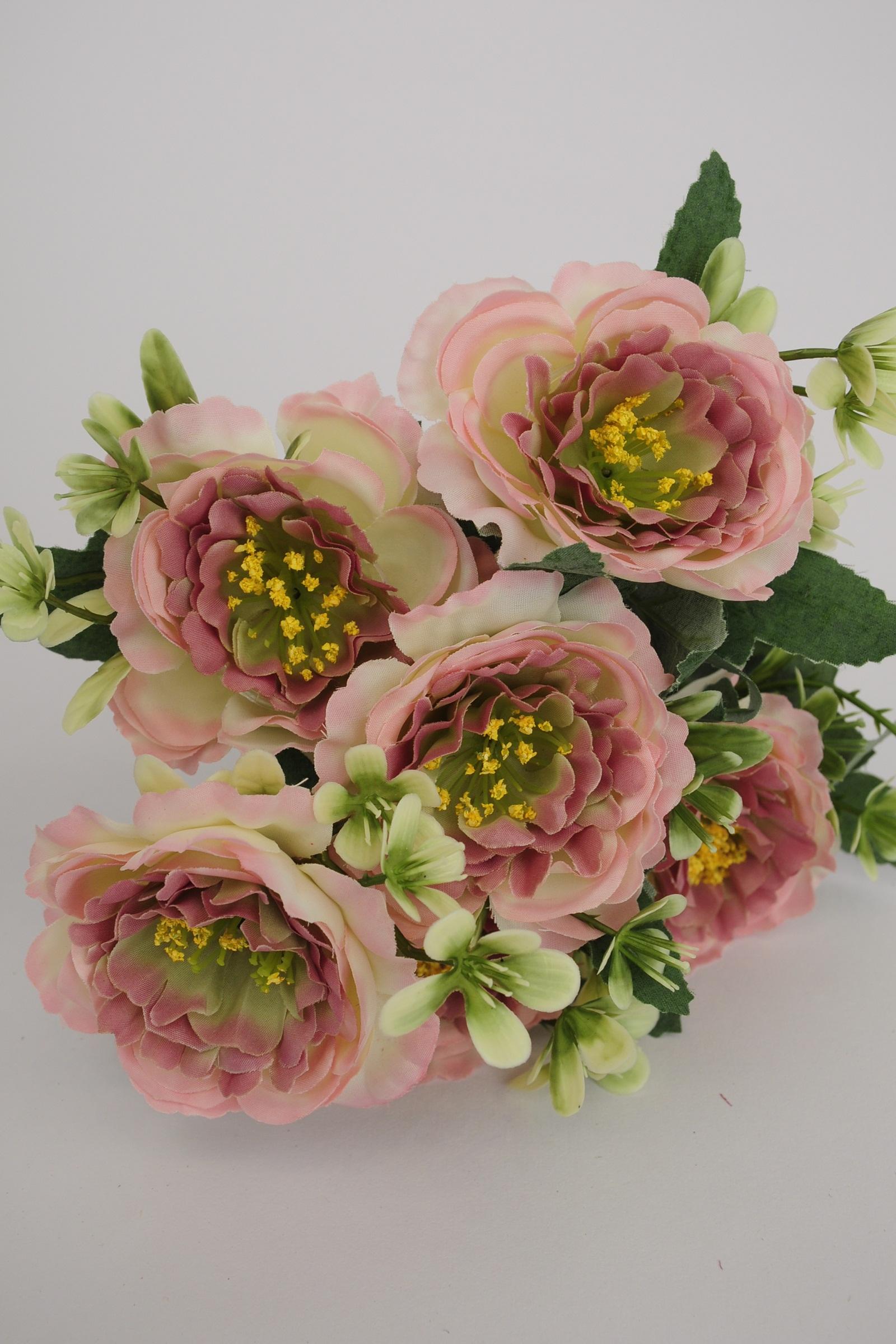 Peach Camellias