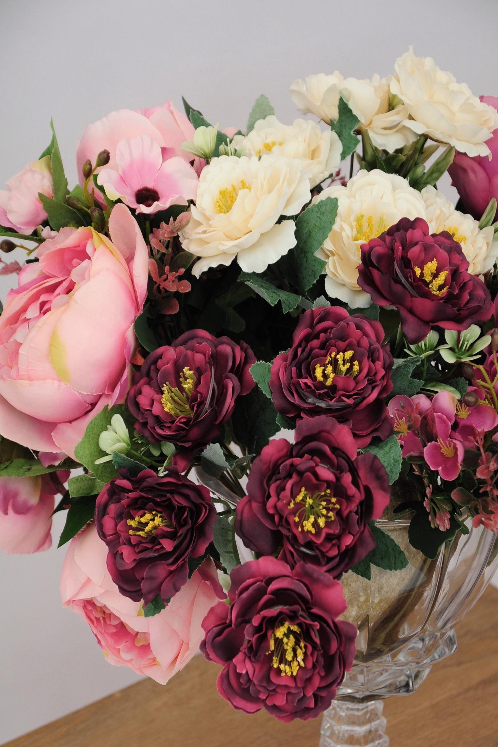 Wine Camellias